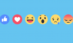 Why Facebook never make a Dislike button but Emoticon Reactions?