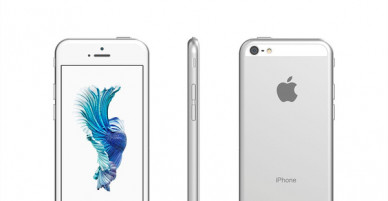 Pictures of the expected 4-inch iPhone